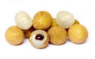 Лонган — полезные свойства экзотического фрукта, его фото