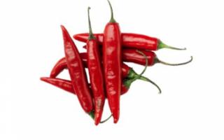 Перец чили — описание пользы и вреда этого жгучего продукта, его фото