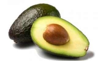 Авокадо — польза, рецепты, выращивание и хранение