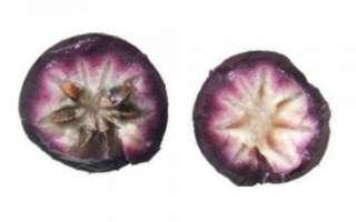 Звездное яблоко — описание свойств этого экзотического фрукта (полезные свойства и противопоказания, вред); использование в кулинарии