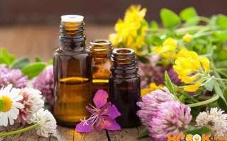 Применение амарантового масла, полезные свойства и вред; как приготовить самому в домашних условиях? – текстовая и видео инструкция