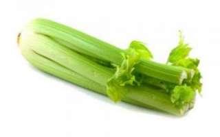 Характеристика полезных свойств сельдерея с фото, применение этого продукта в косметологии и в рецептах блюд