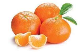 Клементин (фрукт) — полезные свойства этого сорта мандарин