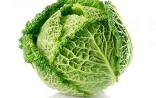 Савойская капуста — калорийность, применение и польза